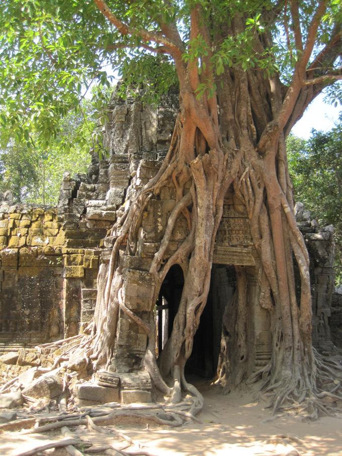 Siem Reap And Angkor Archaeological Park Troopytracks