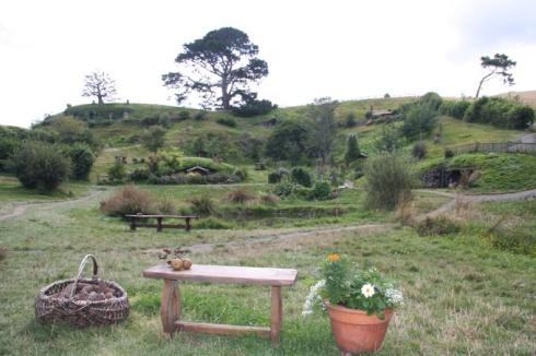 Commununal gardens