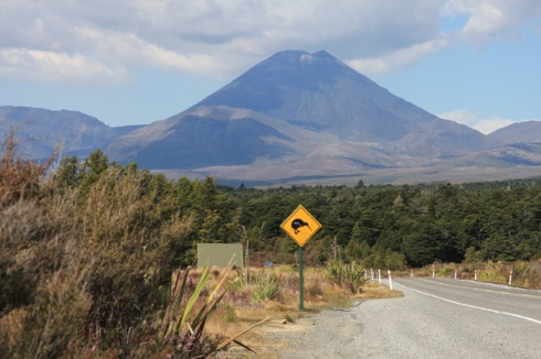 Mt Doom with Kiwi sign