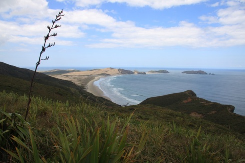 View west from Cape Reinga